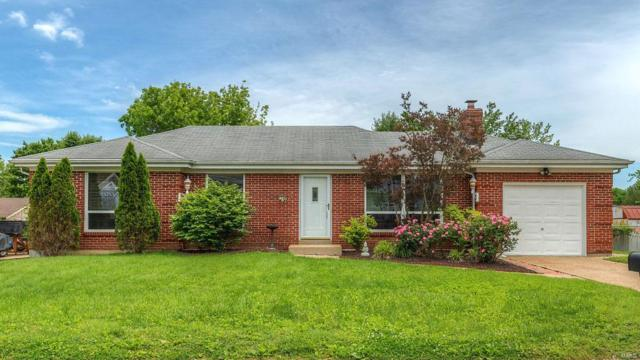 1248 Surfside Drive, Arnold, MO 63010 (#19038023) :: The Becky O'Neill Power Home Selling Team