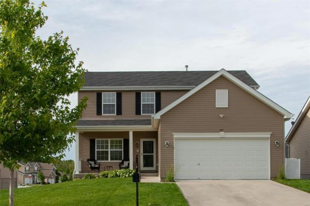 257 Wabash Woods Way, O'Fallon, MO 63366 (#19038130) :: Kelly Hager Group | TdD Premier Real Estate