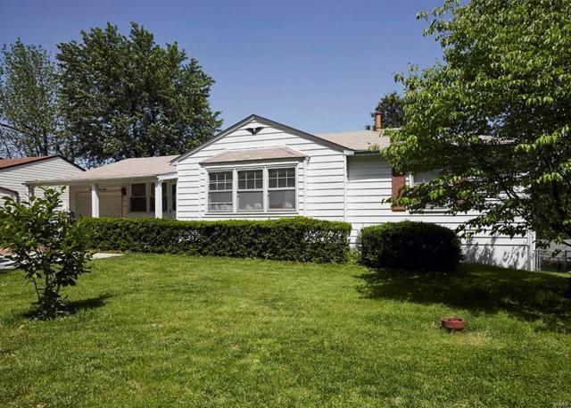 9528 Avila Drive, St Louis, MO 63123 (#19038170) :: Walker Real Estate Team