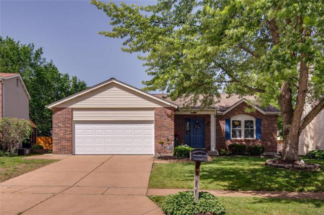 4639 Weber Terrace, St Louis, MO 63123 (#19038244) :: The Becky O'Neill Power Home Selling Team