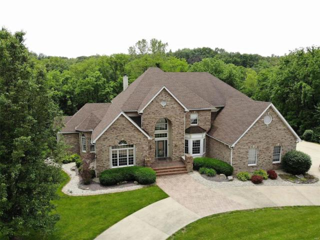 2331 Pebble Creek Drive, Alton, IL 62002 (#19038333) :: RE/MAX Professional Realty