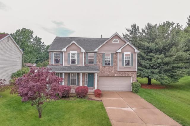 113 Crystal Lane, Fairview Heights, IL 62208 (#19038350) :: Peter Lu Team