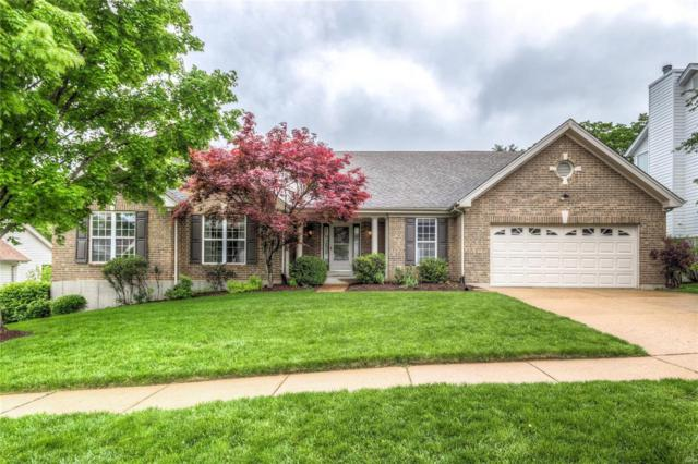 16027 Canterbury Estates Drive, Ellisville, MO 63021 (#19038353) :: The Becky O'Neill Power Home Selling Team