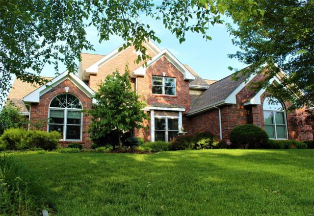 891 Whitmoor Drive, Weldon Spring, MO 63304 (#19038411) :: The Becky O'Neill Power Home Selling Team