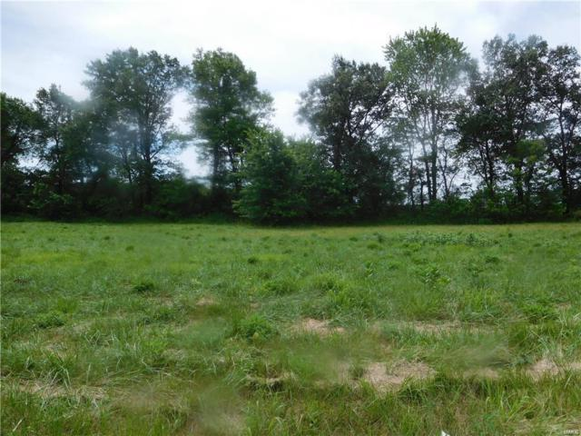 12 Stevenson, POCAHONTAS, IL 62275 (#19038420) :: Matt Smith Real Estate Group