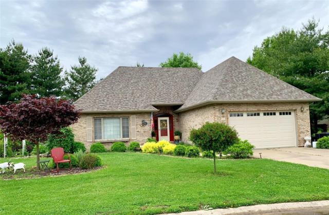 315 Sunflower Drive, Highland, IL 62249 (#19038470) :: Kelly Hager Group | TdD Premier Real Estate