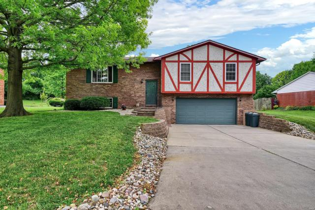 29 Matterhorn Drive, Glen Carbon, IL 62034 (#19038668) :: St. Louis Finest Homes Realty Group