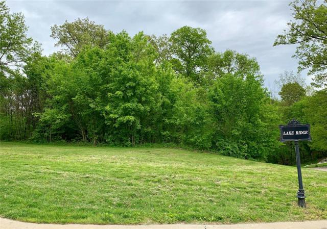 6521 Timber Lake Drive, Collinsville, IL 62234 (#19038798) :: Fusion Realty, LLC