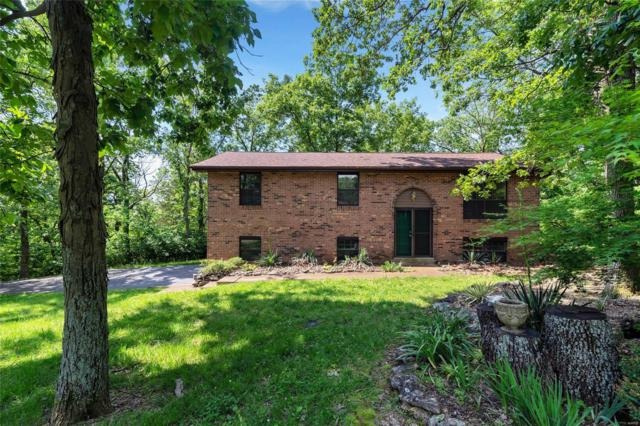 3544 Antonia Woods Drive, Imperial, MO 63052 (#19038893) :: Clarity Street Realty