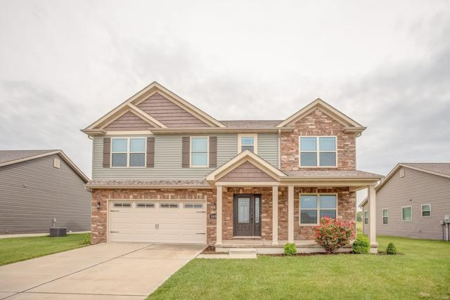 2635 Welsch Drive, Belleville, IL 62221 (#19038932) :: Fusion Realty, LLC