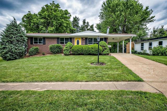 10257 Mullally, St Louis, MO 63123 (#19039016) :: Ryan Miller Homes