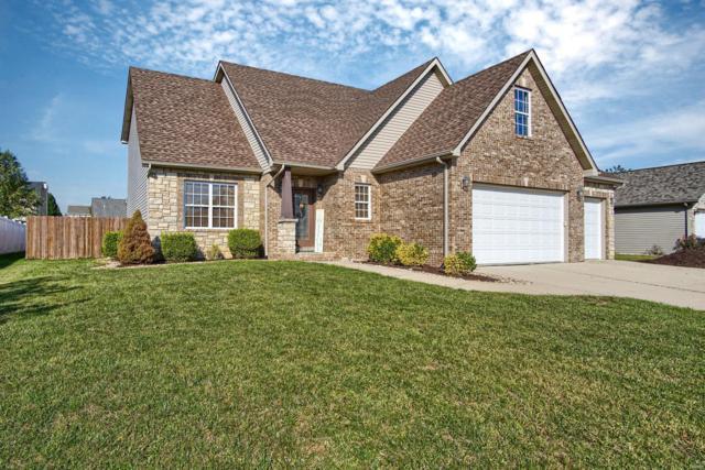 1455 Dale Drive, Troy, IL 62294 (#19039228) :: Fusion Realty, LLC
