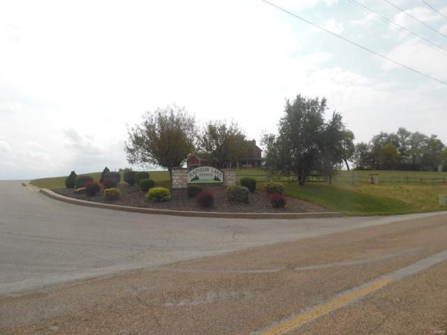 121 Rainbow Lake Drive, Villa Ridge, MO 63089 (#19039799) :: Walker Real Estate Team