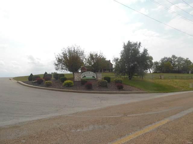 115 Rainbow Lake Drive, Villa Ridge, MO 63089 (#19039820) :: Elevate Realty LLC