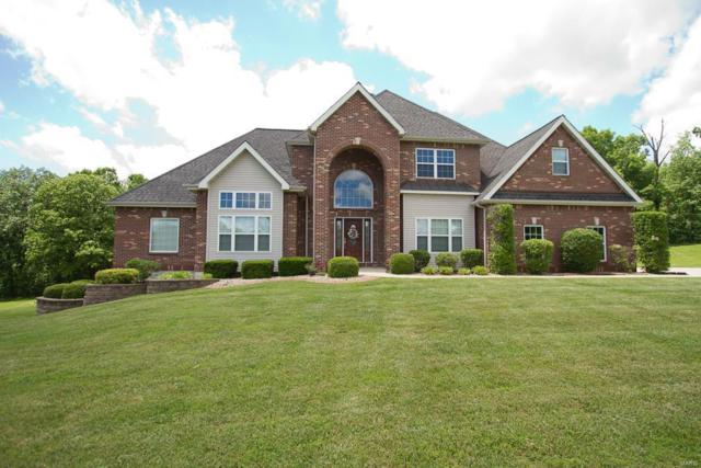 251 Lake Forest Drive, Troy, MO 63379 (#19040301) :: Peter Lu Team