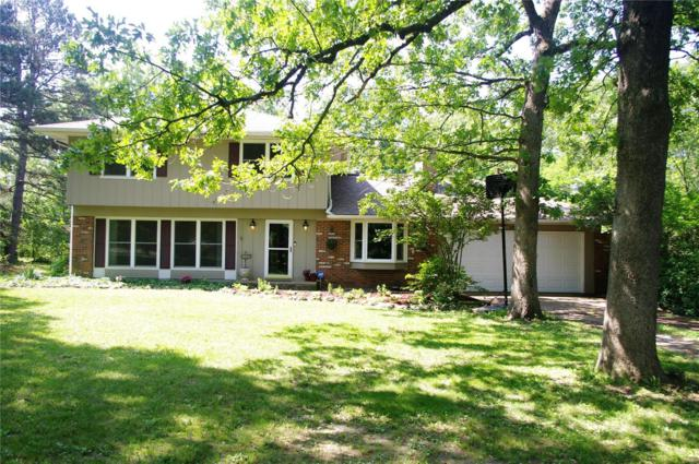 10910 Hanley Drive, Rolla, MO 65401 (#19040601) :: The Becky O'Neill Power Home Selling Team