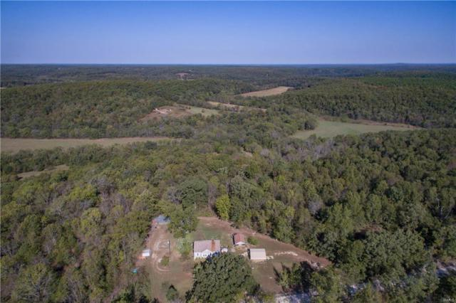 4391 County Rd 2120, Edgar Springs, MO 65462 (#19040623) :: The Becky O'Neill Power Home Selling Team