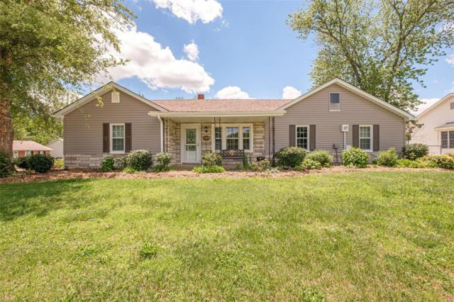 391 Laura Hill, Saint Peters, MO 63376 (#19041054) :: Kelly Hager Group | TdD Premier Real Estate