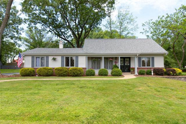 46 Klamberg Lane, Ellisville, MO 63021 (#19041232) :: The Becky O'Neill Power Home Selling Team