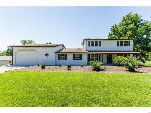 20 Saint Robert Drive, Saint Peters, MO 63376 (#19041245) :: Kelly Hager Group | TdD Premier Real Estate