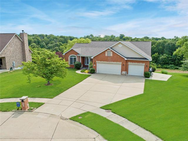 906 High Ridge Drive, Columbia, IL 62236 (#19041270) :: The Kathy Helbig Group
