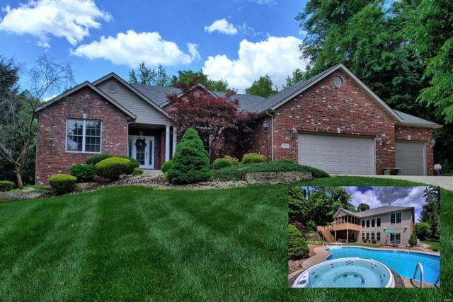6124 Timberwolfe Drive, Glen Carbon, IL 62025 (#19041564) :: St. Louis Finest Homes Realty Group