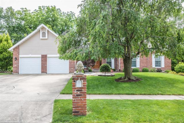 306 Meadow Place Drive, Saint Charles, MO 63303 (#19042432) :: The Kathy Helbig Group