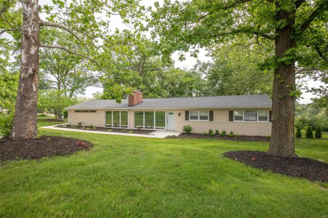 8401 Louwen Drive, Clayton, MO 63124 (#19042550) :: Kelly Hager Group | TdD Premier Real Estate