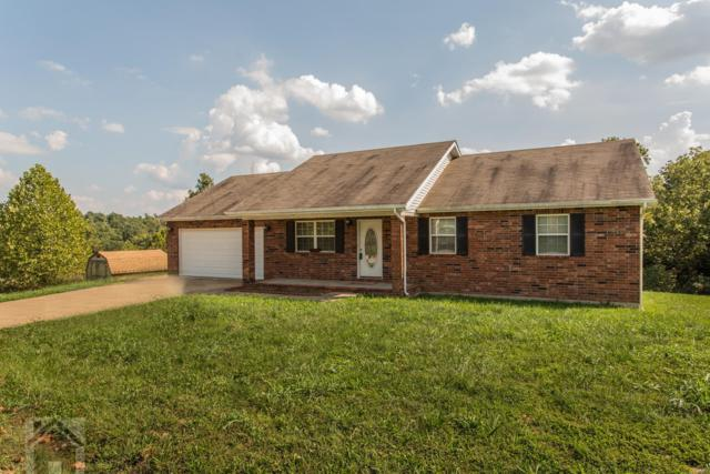 19550 Lilly Lane, Waynesville, MO 65583 (#19042697) :: RE/MAX Professional Realty