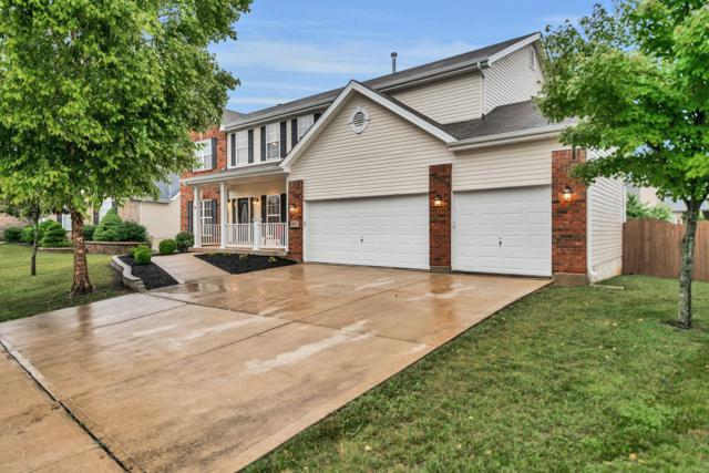 868 Dylan Drive, Wentzville, MO 63385 (#19042791) :: RE/MAX Vision