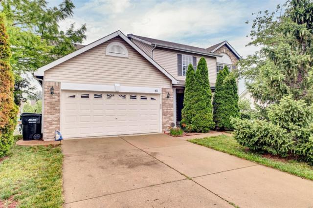 46 Lias Court, Wentzville, MO 63385 (#19042829) :: Barrett Realty Group