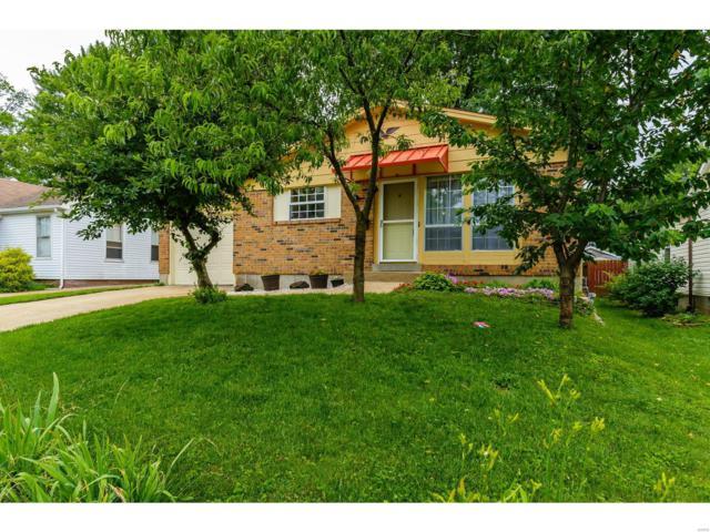 5352 Vine Avenue, St Louis, MO 63123 (#19042989) :: Walker Real Estate Team