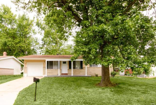 11535 Criterion Avenue, St Louis, MO 63138 (#19043176) :: The Kathy Helbig Group