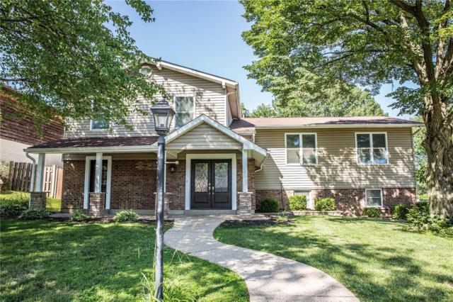 10118 Hilltop Drive, St Louis, MO 63128 (#19043672) :: Kelly Hager Group | TdD Premier Real Estate