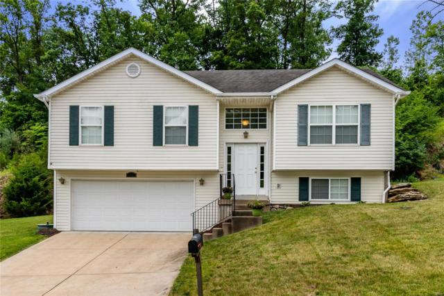4137 Erin Mdw, House Springs, MO 63051 (#19043796) :: RE/MAX Vision