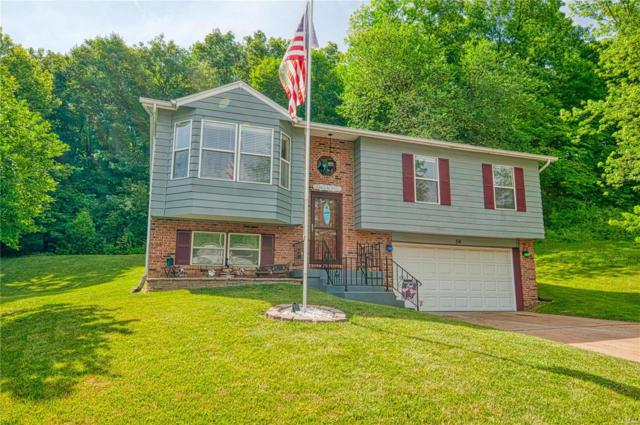 56 Sparrow Point Circle, Fenton, MO 63026 (#19043806) :: The Becky O'Neill Power Home Selling Team