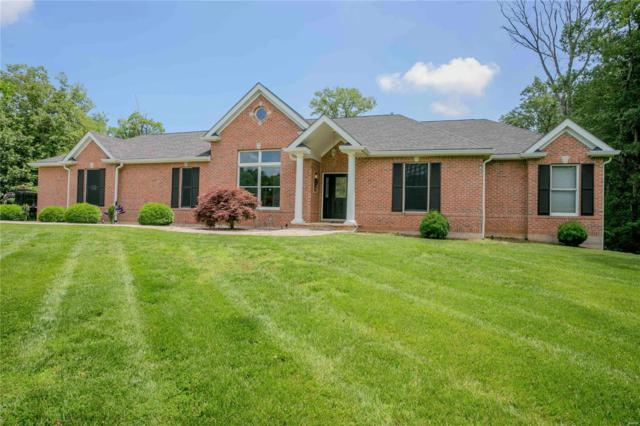 309 Walnut Forest Drive, O'Fallon, MO 63366 (#19044011) :: Holden Realty Group - RE/MAX Preferred