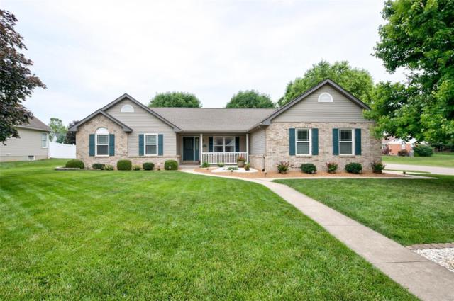 411 Briarcliff Drive, Waterloo, IL 62298 (#19044016) :: The Kathy Helbig Group