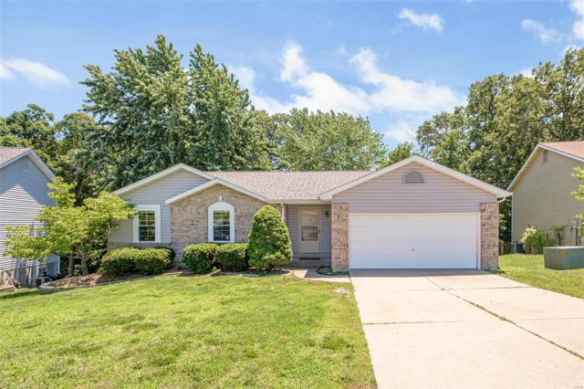 306 Birmingham Drive, O'Fallon, MO 63366 (#19044092) :: Kelly Hager Group | TdD Premier Real Estate