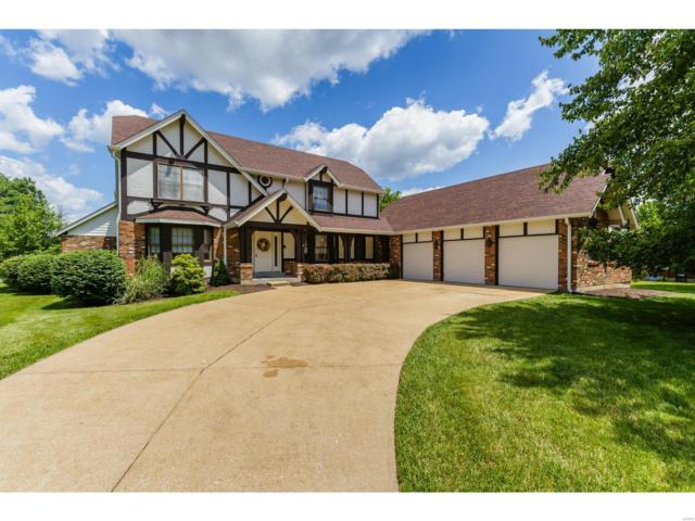 4415 Landeau Trace Court, St Louis, MO 63128 (#19044443) :: Clarity Street Realty