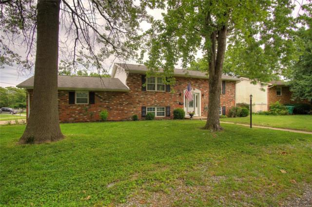 300 S 5th Street, Mascoutah, IL 62258 (#19044464) :: Holden Realty Group - RE/MAX Preferred