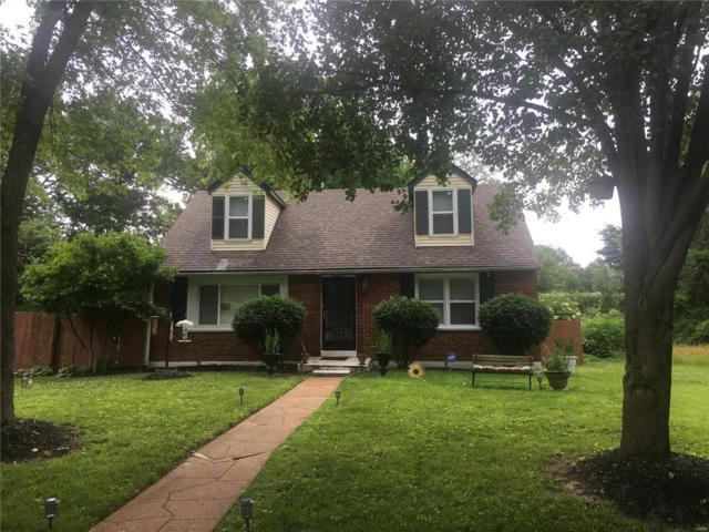 12044 Madrid Avenue, St Louis, MO 63138 (#19044471) :: Ryan Miller Homes