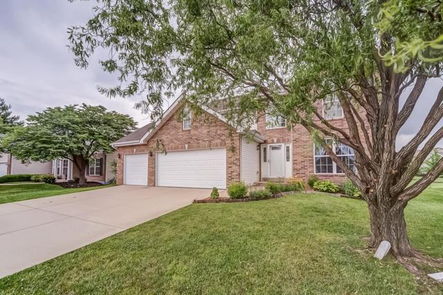 717 Wild Horse Creek Drive, Fairview Heights, IL 62208 (#19044473) :: The Becky O'Neill Power Home Selling Team