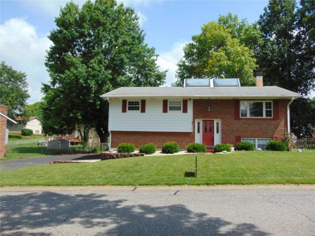 409 Bunker Hill Drive, Collinsville, IL 62234 (#19044580) :: Matt Smith Real Estate Group