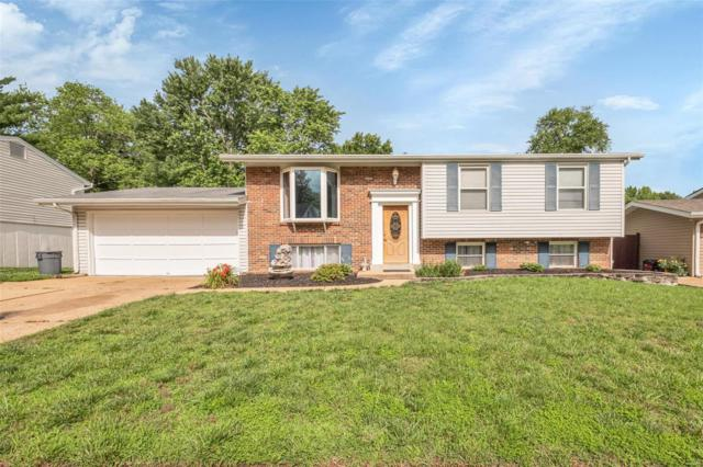 917 Parkfield Terr, Manchester, MO 63021 (#19044701) :: The Kathy Helbig Group