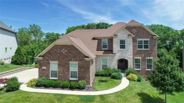 15341 Squires Way Drive, Chesterfield, MO 63017 (#19044949) :: The Kathy Helbig Group