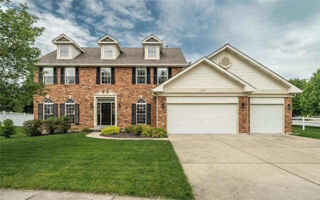 517 Clayton Meadows Court, Ballwin, MO 63011 (#19044957) :: The Becky O'Neill Power Home Selling Team