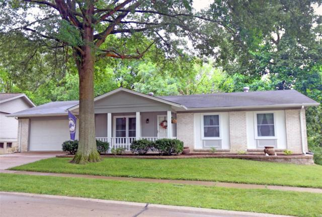 6423 Towne Woods, St Louis, MO 63128 (#19045033) :: The Becky O'Neill Power Home Selling Team