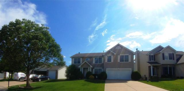143 Shortstop Court, O'Fallon, MO 63366 (#19045138) :: The Kathy Helbig Group