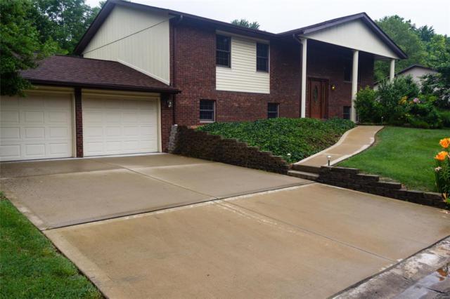 53 Glendale Drive, Glen Carbon, IL 62034 (#19045181) :: Ryan Miller Homes